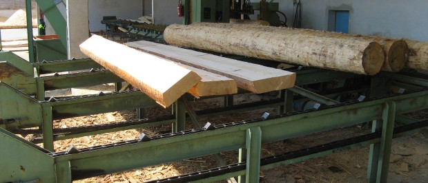Primary wood processing